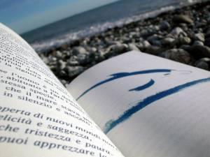 Nouveautés livres et DVD © Enrico Masciocchi