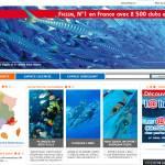 FFESSM - Fédération française d'Etudes et de Sports Sous-Marins