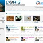 DORIS : Données d'Observations pour la Reconnaissance et l''Identification de la faune et de la flore Subaquatiques