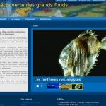"""Ifremer - """"Les applications en biotechnologie"""" dans Enjeux - Les applications – Ressources biologiques sur le site A la découverte des grands fonds"""