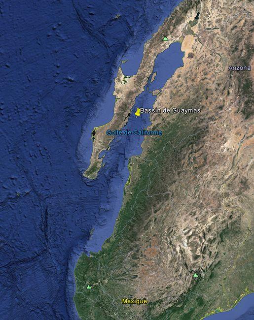 Les vers Riftia et fumeurs noirs ont été filmés au large des côtes mexicaines