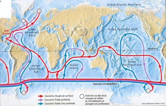 Les scientifiques ont observé 2 efflorescences massives de phytoplancton au niveau du courant circumpolaire antarctique.
