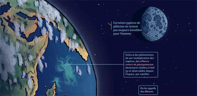 Cliquez sur l'image pour accéder à la BD digitale Planktos
