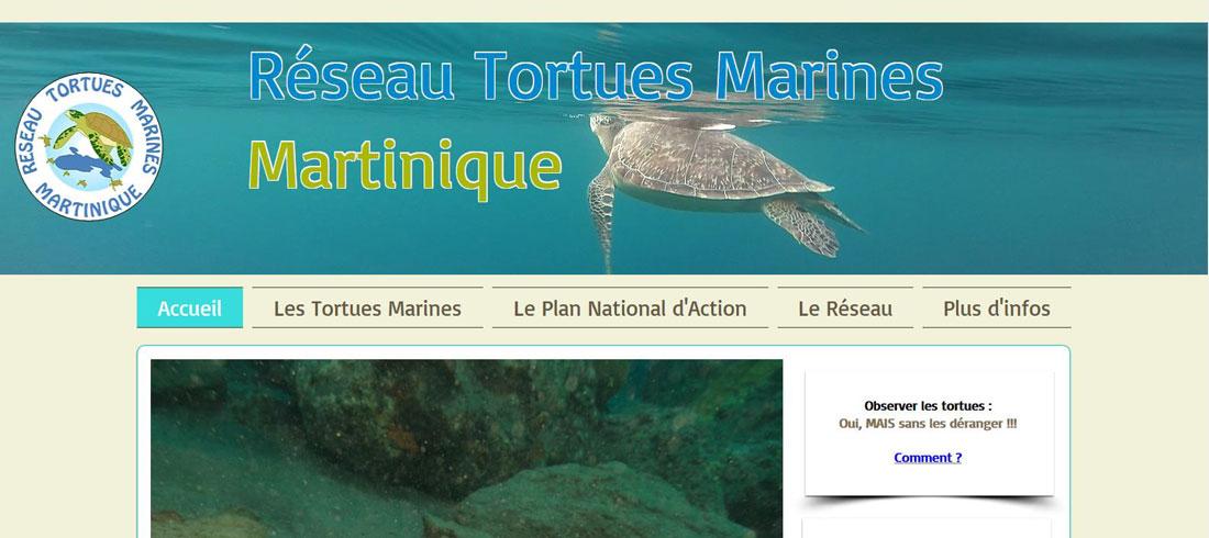 Réseau Tortues Marines-Martinique
