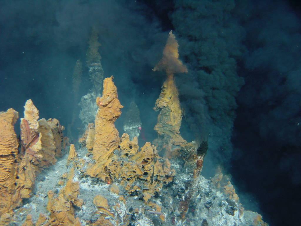 Les sources hydrothermales dégagent de nombreux éléments métalliques dont le fer ©IFREMER