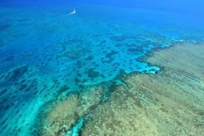 Grande barrière de récif corallien © Roger Buser http://fr.freeimages.com