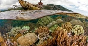 Le récif de Valen © Image: Conservation International/photo by John Martin
