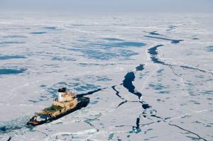 Gakkel : les oasis de l'Arctique
