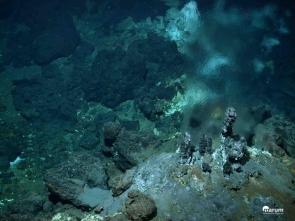 A la recherche de nouveaux antibiotiques au fond de l'océan Atlantique