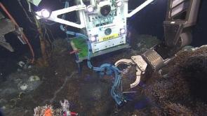 Neptune accueille Tempo-Mini