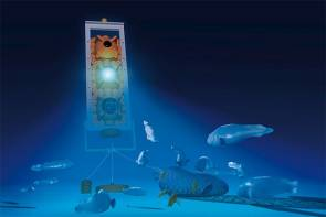 Edokko-1 est un dispositif sous-marin sans pilote de petite taille © Edokko-1