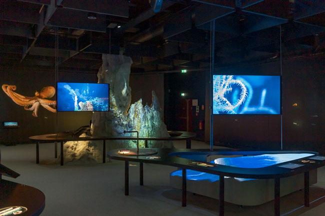 Représentation de la source hydrothermale Tour Eiffel dans la parcours L'Océan du Futur de La Cité de la Mer ©La Cité de la Mer-BAP-Vincent Rustuel