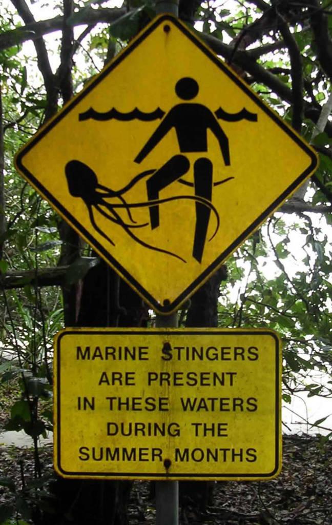 Pancarte indiquant la présence de cuboméduses en Australie ©Wikimedia Commons