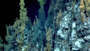Sources chaudes sous-marines découvertes en 2016 lors de l'expédition « Deepwater Exploration of the Marianas » menée, dans la zone des Mariannes, par les équipes de l'Institut océanographique américain NOAA à bord de l'Okeanos Explorer. © NOAA Office of Ocean Exploration and Research, 2016 Deepwater Exploration of the Marianas.