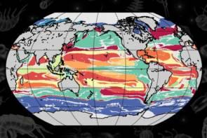Les chercheurs ont généré une carte de l'océan mondial, colorée par type de province. © Image: Courtesy of the researchers, edited by MIT News.