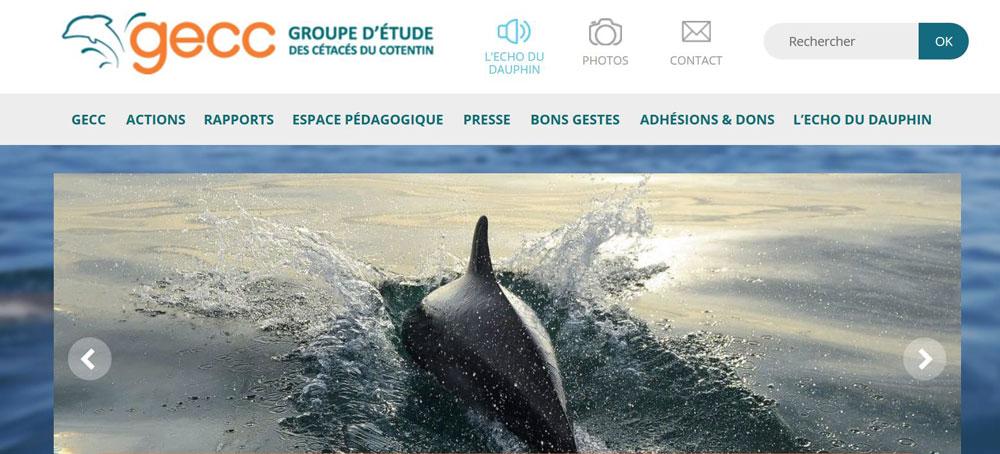 Groupe d'Étude des Cétacés du Cotentin - GECC