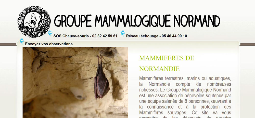 Groupe Mammalogique Normand - GMN