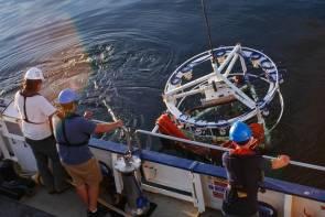 Déploiement d'un dispositif 3D sur l'observatoire océanique NEPTUNE © Kyle Neumann/Ocean Exploration Trust