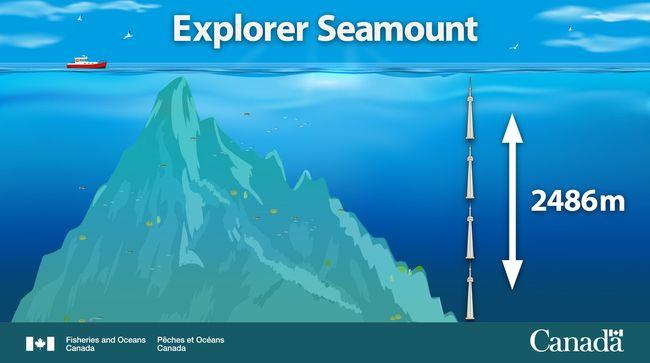 Le mont sous-marin Explorer mesure 2 486 mètres de haut, l'équivalent de 4 tour CN (Toronto) empilées l'une sur l'autre. © Pêches et Océans Canada