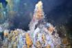 Sources hydrothermales sur la ride médio-atlantique (TAG et Snake Pit) © Ifremer-Biscose 2Sources hydrothermales sur la ride médio-atlantique (TAG et Snake Pit) © Ifremer-Biscose 2