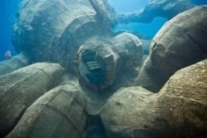 La pieuvre a été immergée pour créer un nouveau récif © Owen Bugg