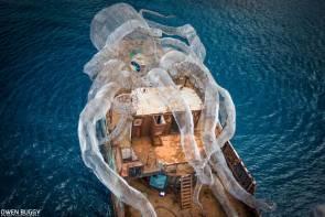Une pieuvre géante va bientôt servir de récif © Owen Bugg