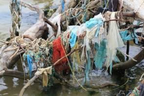 La mer Baltique est considérée comme la plus polluée au monde ©Pixabay