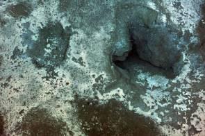 Hydrate de méthane actif sur une dorsale située dans le Pacifique Nord-Ouest © NSF-OOI/UW/CSSF
