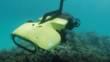 Le robot RangerBot protecteur des récifs coralliens QUT