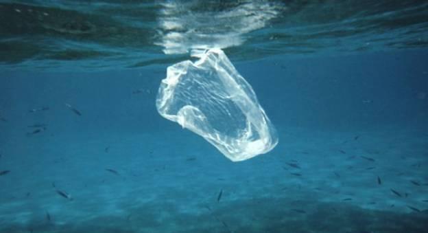 Sac plastique flottant dans l'océan © Ben Mierement, NOAA Photo Library
