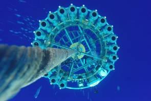 Les capteurs sont descendus dans les eaux claires de l'océan Pacifique au large des côtes d'Hawaï © huffingtonpost.com