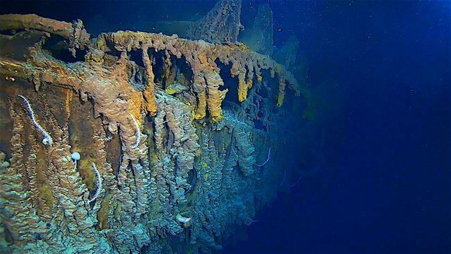 2019 : l'épave du Titanic est en partie couverte de rusticles © Atlantic Productions