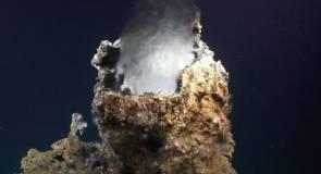 Source hydrothermale sur le site de Pescadero ©Schmidt Ocean Institute
